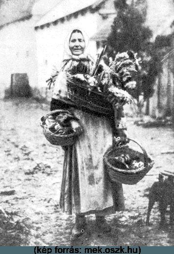 A népi gyógyászat _:híres parasztorvos a mátészalkai Bakos Ferenc volt, akinek 1950-es években keletkezett versét a népi gyógyászoknak ma is illik megtanulni, hiszen abban tömören és velősen össze van foglalva az egyes betegségek és gyógymódjuk
