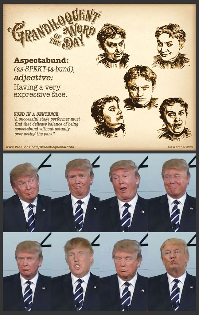 """Grandiloquent Word of the Day: Aspectabund (as•SPEKT•ta•bund)Adjective:-Having a very expressive face.From aspect - a way of viewing things, from Latin aspectus """"a seeing, looking at, sight, view, countenance, appearance,"""" from past participle of aspicere """"to look at,"""" from ad- """"to"""" + specere """"to look"""". Meaning """"the look one wears, the appearance of things""""+The Latin adjective-forming suffix -bundus - """"to become, to grow"""" (as in abundant)..."""