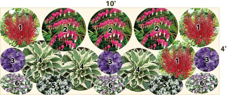 Shade Perennial Garden   part shade garden plans   Pinterest