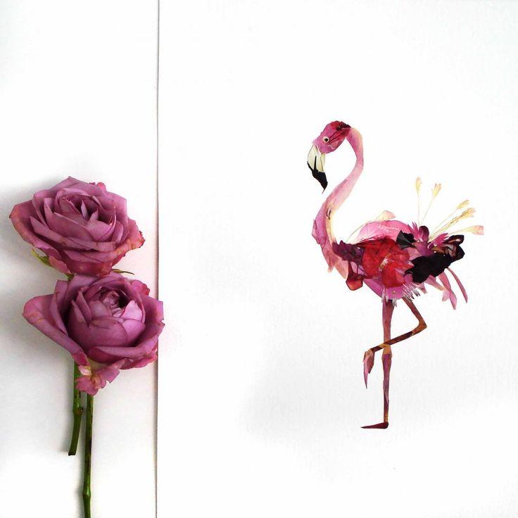 Flamingo from pressd flowers #flamingo #flowers #pressdflowers #art
