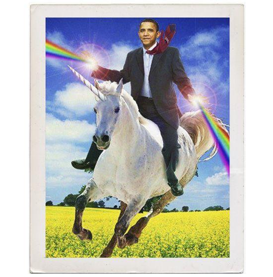 Thank you, Obama.: Like A Boss, Gay Marriage, Fields Of Flowers, Barackobama, Same Sex Marriage, U.S. Presidents, Even, Girls Style, Barack Obama