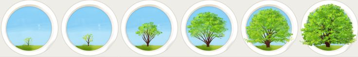This image placed above is another example of a graphic sequence. Through this five image graphic sequence, the viewer is able to witness the growth of a tree. In each of the five different images there is an image of a tree that begins to grow and each image the tree is at a different stage of its growth, which is expressed through the gradual growth in height of the tree trunk and the addition of leaves, in order to end with the final image as a full grown tree.