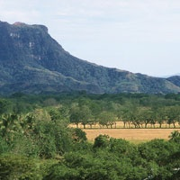 El río Magdalena nace en el Macizo Colombiano, en las altas cumbres de la cordillera Central y recorre múltiples ambientes como nevados, páramos, bosques andinos, sabanas y valles inundables. Valle medio del Magdalena.