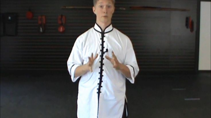 (15) Yang Tai Chi 108 Form: Step Forward, Parry, and Punch (Yang Shi Tai...