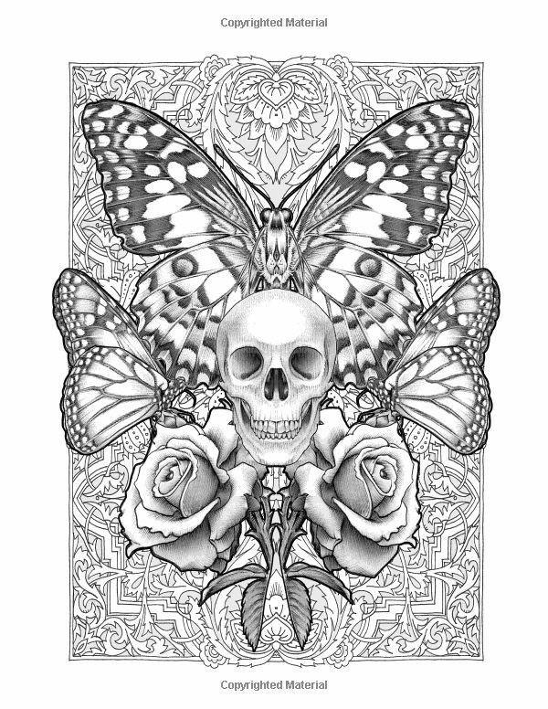 skull and butterflies   ausmalbilder, tierzeichnung