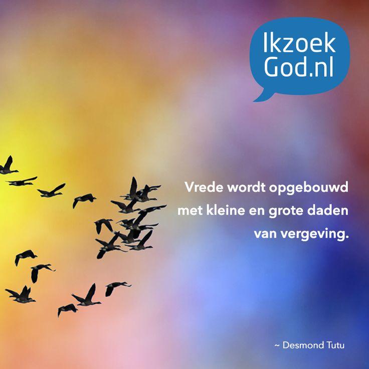 Vrede wordt opgebouwd met kleine en grote daden van vergeving. Desmond Tutu #vergeven #vergeving #tutu #desmondtutu #vogels #vliegen #vrede #lucht #God #Jezus