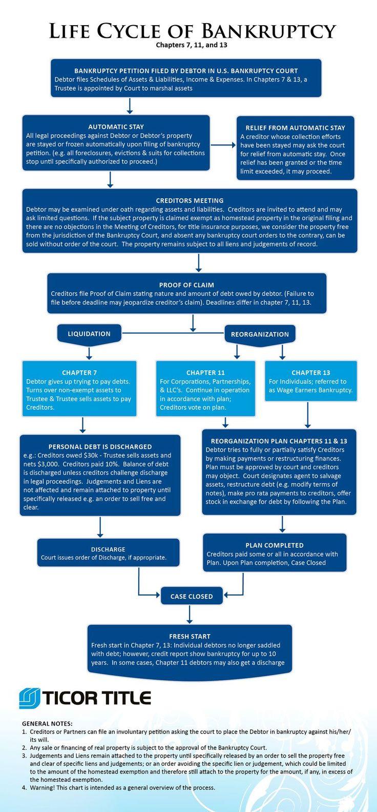 25 best bankruptcy infographics images on pinterest | filing