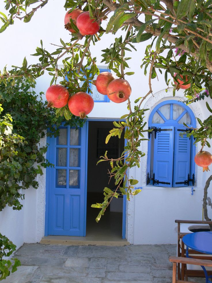 Pomegranates on the Patio | A pomegranate tree just outside the terrace, Remezzo Villas, Thira, Greece