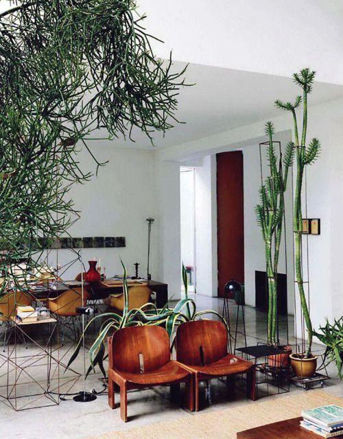 Structured plant chaos: Interior Design, House Plants, Green, Interiors, Livingroom, Houseplant, Living Room, Indoor Plants, Cactus