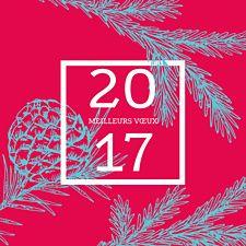 Carte de voeux artisitique avec son cadre carré, son fond teinté de rouge et ses jolies pommes de pin bleu clair. Une petite touche hivernale pour des voeux originaux made in Popcarte