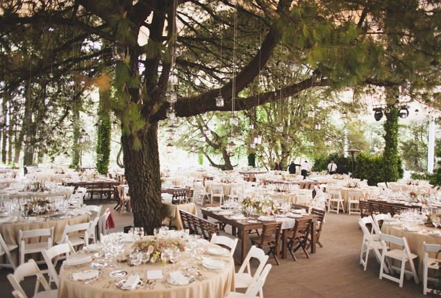 Cape Town Wedding Venue Forest Inspiration