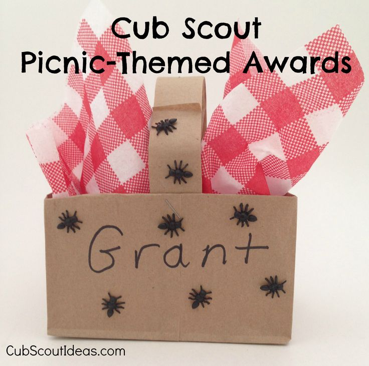 Fun way to present #CubScout awards at a picnic.