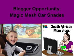 Blogger Opportunity: Magic Mesh Car Shades