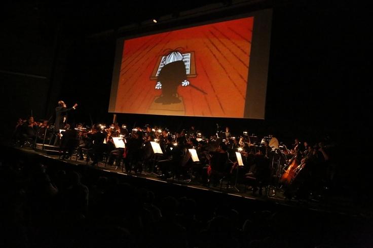 Emocionante noche de la Sinfónica Nacional de Colombia.  Crédito Juan David Padilla @Congo Amarillo Mincultura 2013.