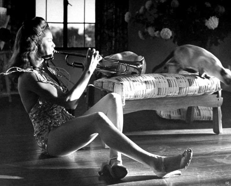 0 Dona Drake playing trumpet for  Siamese cat