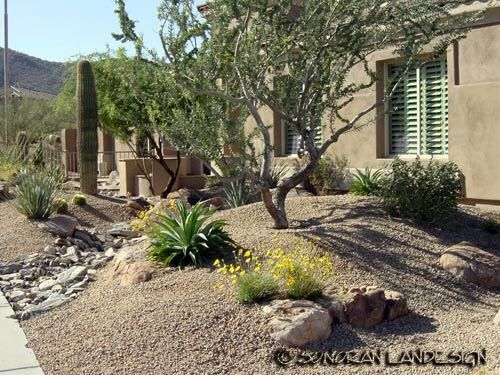 15 best Desert landscaping front yard and back yard images on