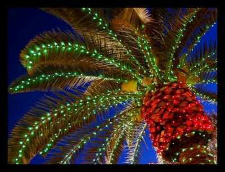 christmas palm tree-#44