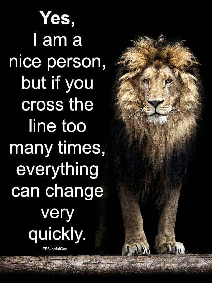 It Sure Can Quotes Quotes Lion Quotes Inspirational Quotes