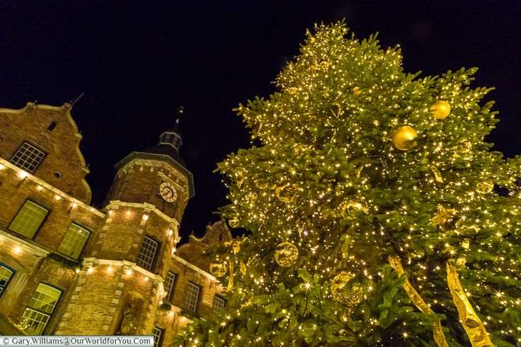 The tree in front of the Rathaus, Düsseldorf, Germany