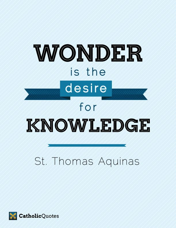Catholic Fire My Favorite St Thomas Aquinas Quotes | Best Quotes