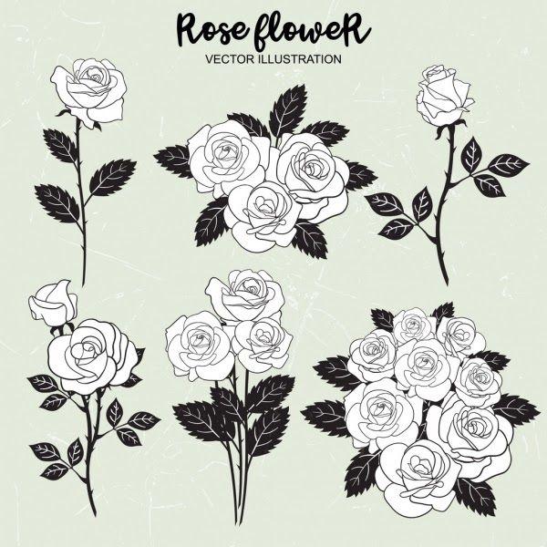 Paling Populer 26 Gambar Animasi Bunga Mawar Hitam Putih Bila Kebanyakan Orang Menyukai Gambar Mawar Yang Tidak Hit Gambar Mawar Mawar Hitam Ilustrasi Vektor