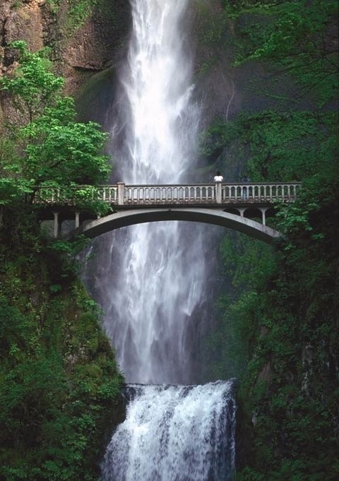 Waterfall in portland