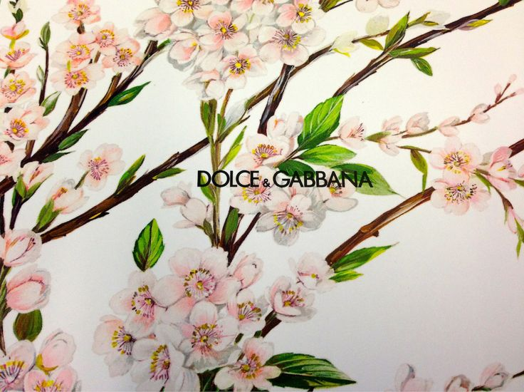 It's official! Dolce & Gabbana will open its first flagship store in Romania, on The Grand Avenue, on December 11! Excitement on ! #DolceGabannaRomania