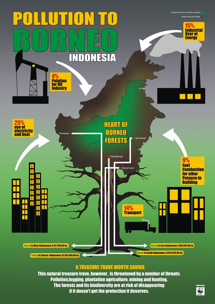 Iniharta karunalam,namunterancam olehsejumlah ancaman.Polusi, penebangan, perkebunanpertanian, pertambangandan berburu.Hutan dankeanekaragaman hayatiberesikomenghilangjika tidakmendapatkan perlindunganyang layak.