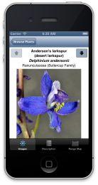 New Oregon Wildflowers app from www.highcountryapps.com