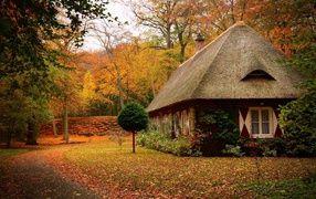 Маленький дом в лесу осенью