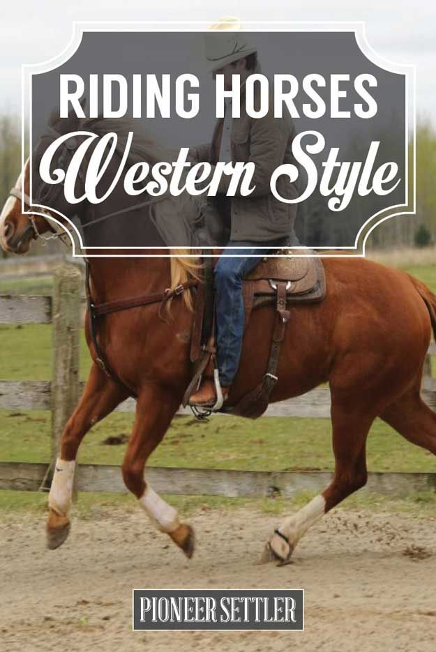 Western Horseback Riding | How To Ride A Horse Like A Cowboy by Pioneer Settler at http://pioneersettler.com/western-horseback-riding/