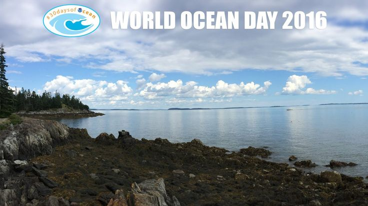 NOAA's Ocean Service ‏@noaaocean 8/06/'16  Happy #WorldOceanDay! What do you know about our world ocean? #30DaysofOcean VIDEO: http://1.usa.gov/1O59FSt      World Oceans Day (@CelebrateOceans) | Twitter