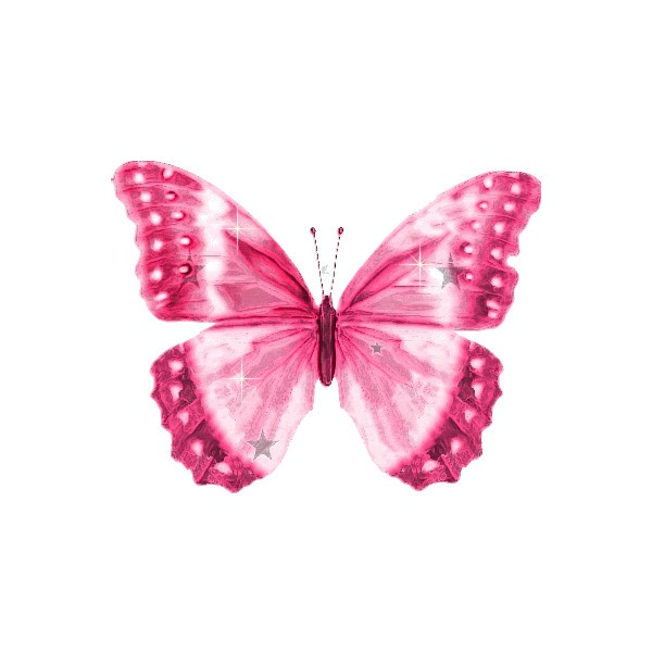 https://s-media-cache-ak0.pinimg.com/736x/65/65/a4/6565a4a3c234f4042b16cbb821769938.jpg Pink Butterfly Graphics