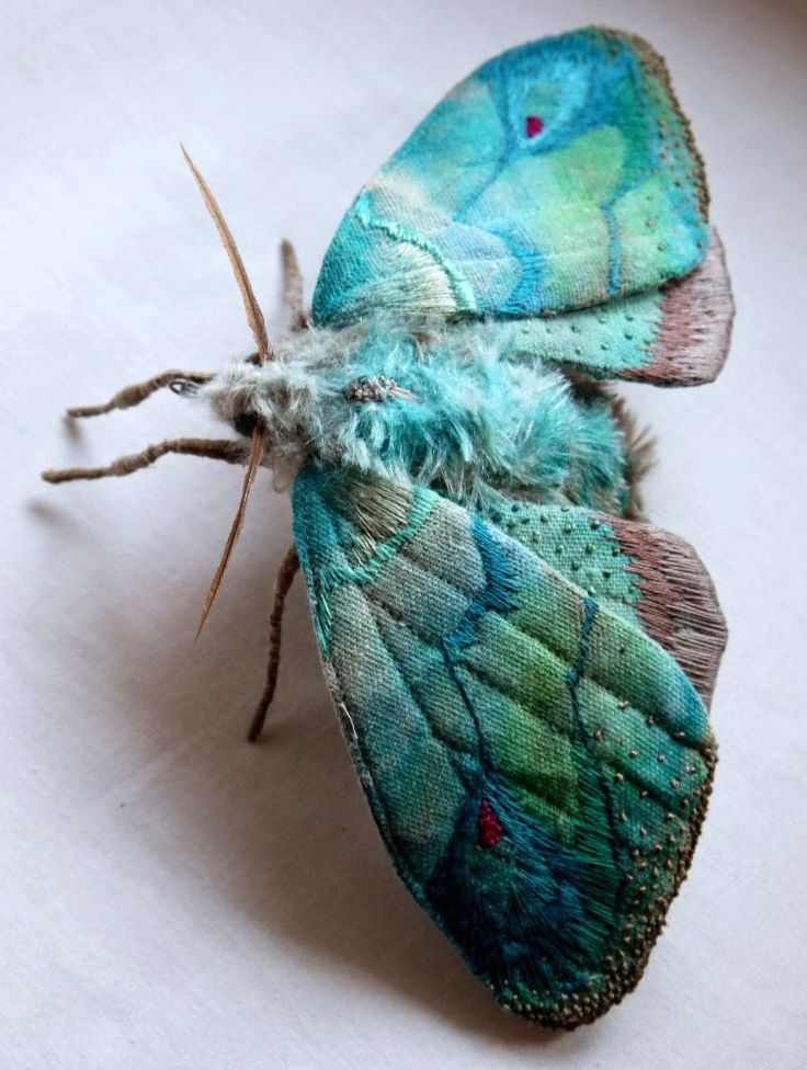 http://4rtgallery.blogspot.com/2014/07/textile-insect-sculptures-by-yumi-okita.html