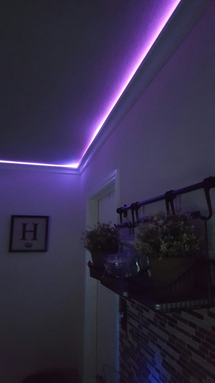 9 best led accent lightning indooroutdoor images on pinterest crow molding led lighting mozeypictures Image collections