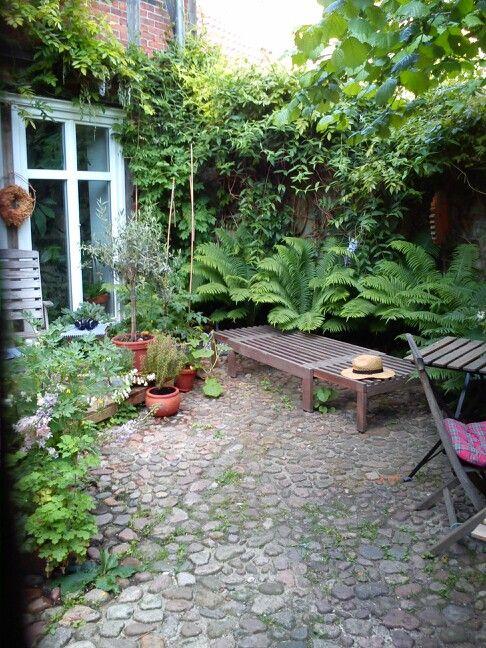 Hinterhof Im Sommer