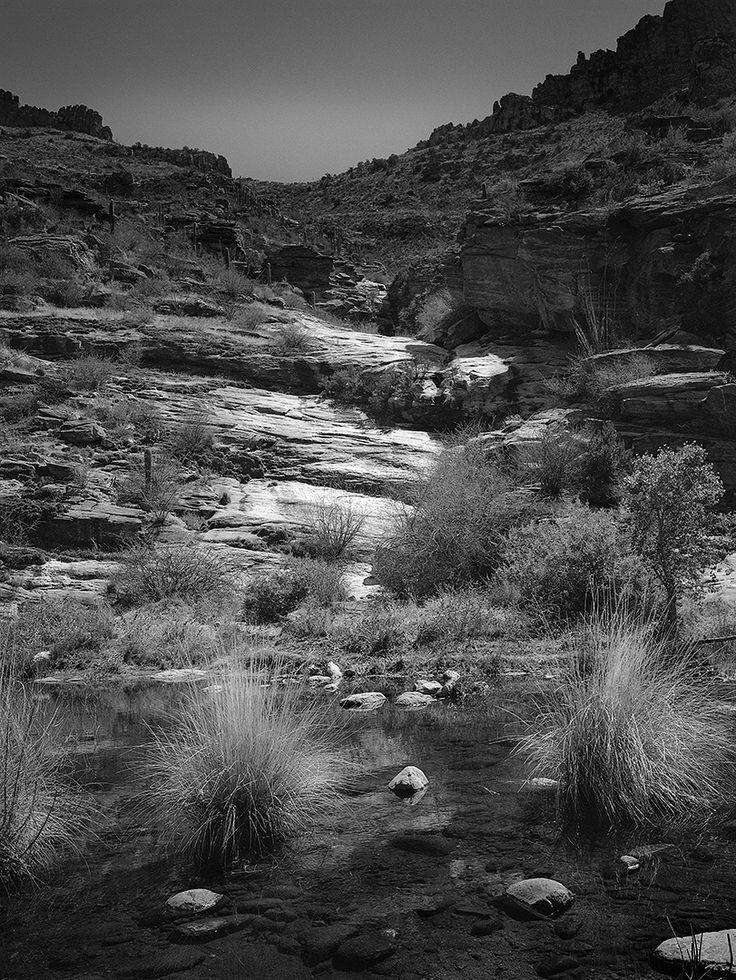 Sabino Canyon, Tucson, Arizona, 2016
