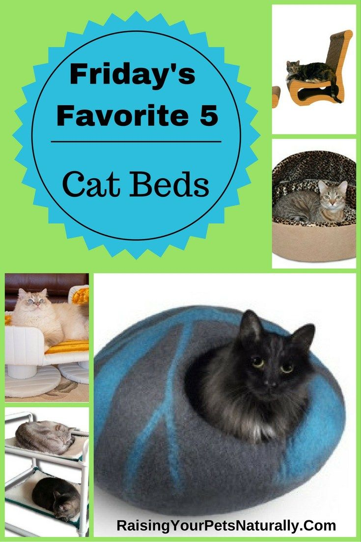 The best cat beds, cat bunk beds, heated cat beds and more. If you are looking for a luxury cat bed or a unique covered cat bed, check out today's Friday's Favorite 5.