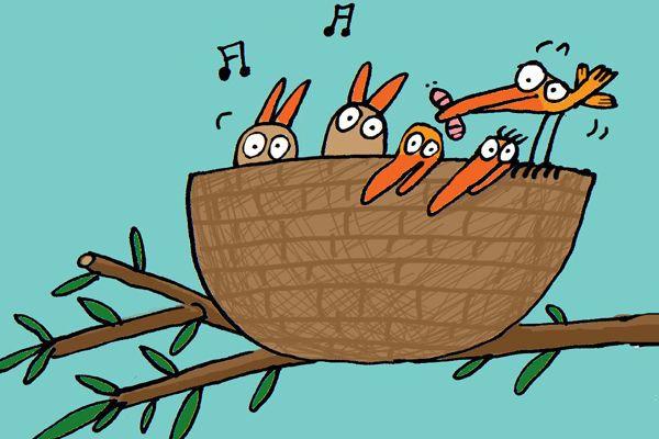 Kvíz: Ptačí zvuky O ptácích-Foto:Barbora Buchalová