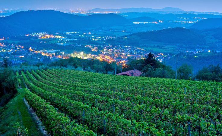 Una sera tra i vigneti in quota sulle colline di Franciacorta http://www.excantia.com/produttori/cantine/majolini