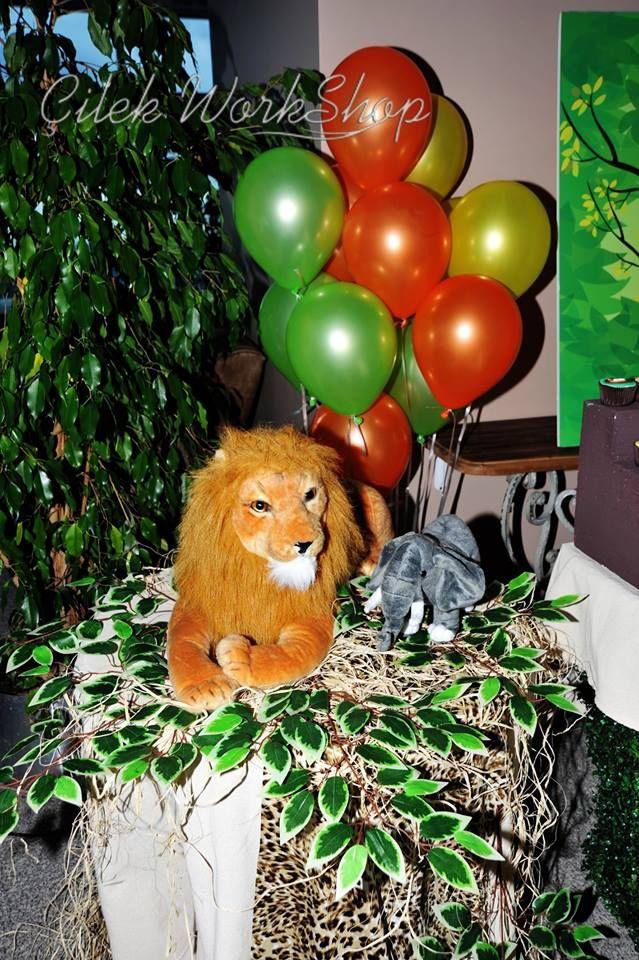 Gökdeniz 1 Yaş Safari Doğum Günü Partisi - 8