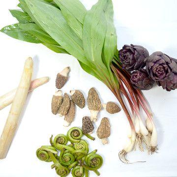 59 best morel mushrooms images on pinterest mushroom for Morel mushroom recipes food network