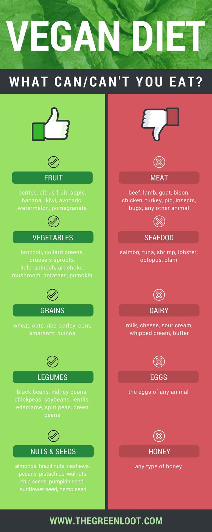 things you cant get from vegan diet