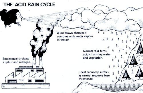 Worksheets Acid Rain Worksheet collection acid rain worksheet photos kaessey pictures kaessey