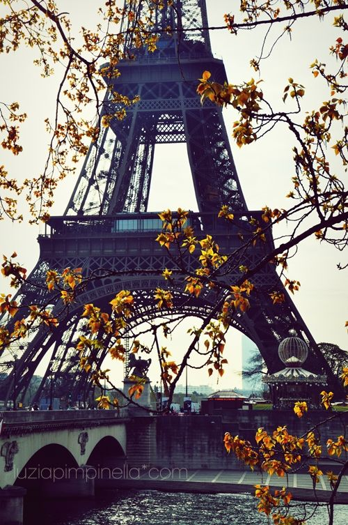Paris in springtime... Beautiful, French Culture... Love Languages www.sanako.com