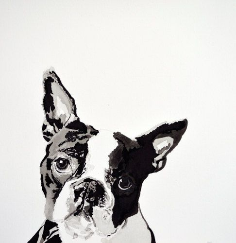"Ink and Brush Drawing on Watercolor Paper Boston Terrier 8"" x 10"" Print  www.christinahewson.com  www.christinahewson.blogspot.com"