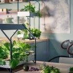 """Tendance et de saison, le potager d'intérieur est la nouveauté """"green"""" du printemps signée IKEA. Ces petites maisonnettes à laitues sont disponibles en avril."""