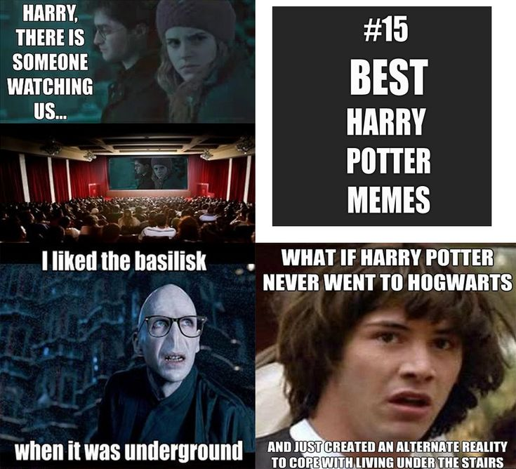 14 Hilarious Harry Potter Memes #hp | Books and such ...