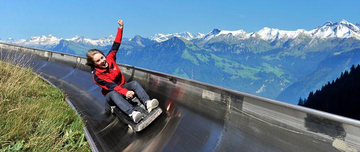 Longest summer toboggan run in Switzerland - PILATUS