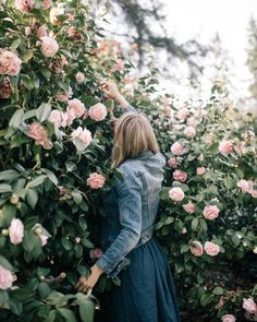 in the flowers | ban.do